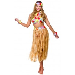 Fantasia Adulto Feminina Havaiana Festa do Havaí Carnaval