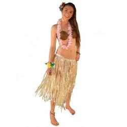 Fantasia Adulto Feminina Havaiana Top de Côco Festa do Havaí Carnaval