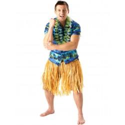 Fantasia Masculina Havaiano Festa Havaí Carnaval