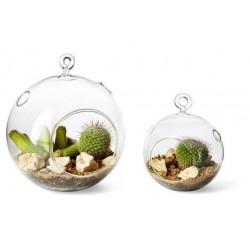 Vasinho para Plantas Suculentas ou Cactus Esfera Vidro