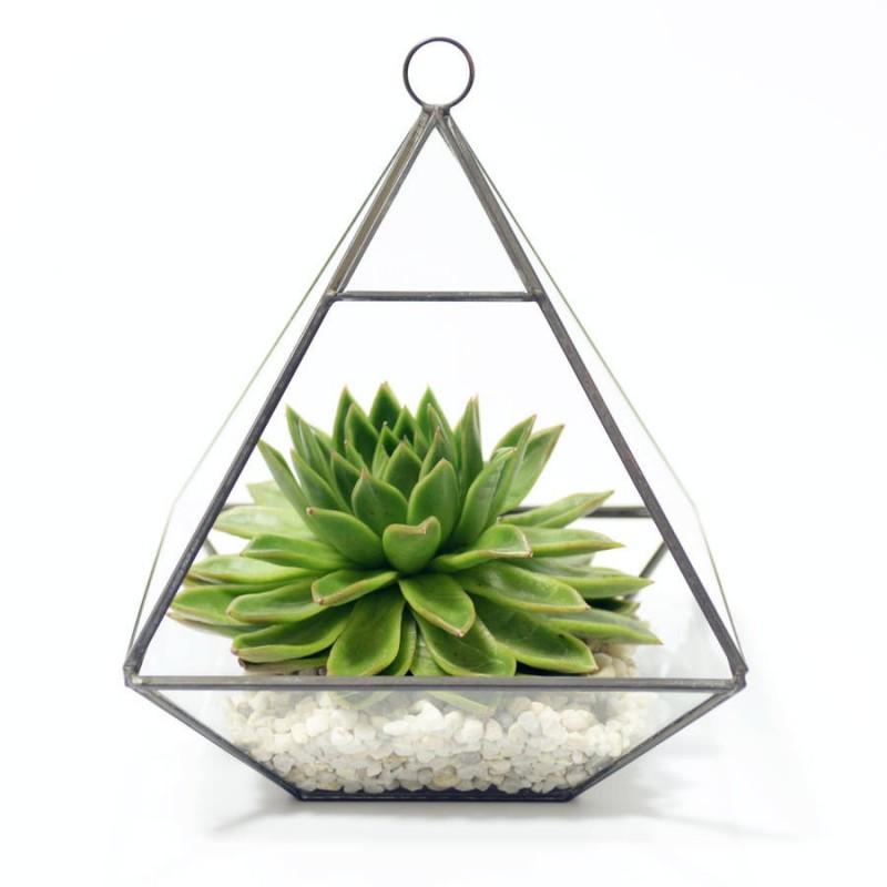 Vasinho para Plantas Suculentas ou Cactus Pirâmide Vidro