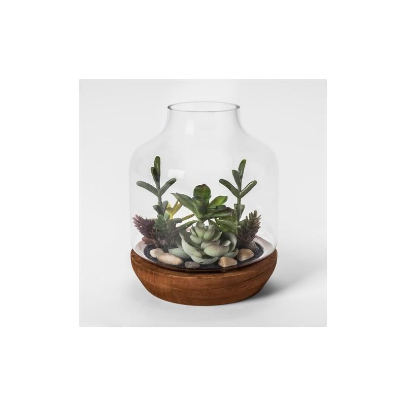 Vasinho para Plantas Suculentas ou Cactus Garrafa Vidro