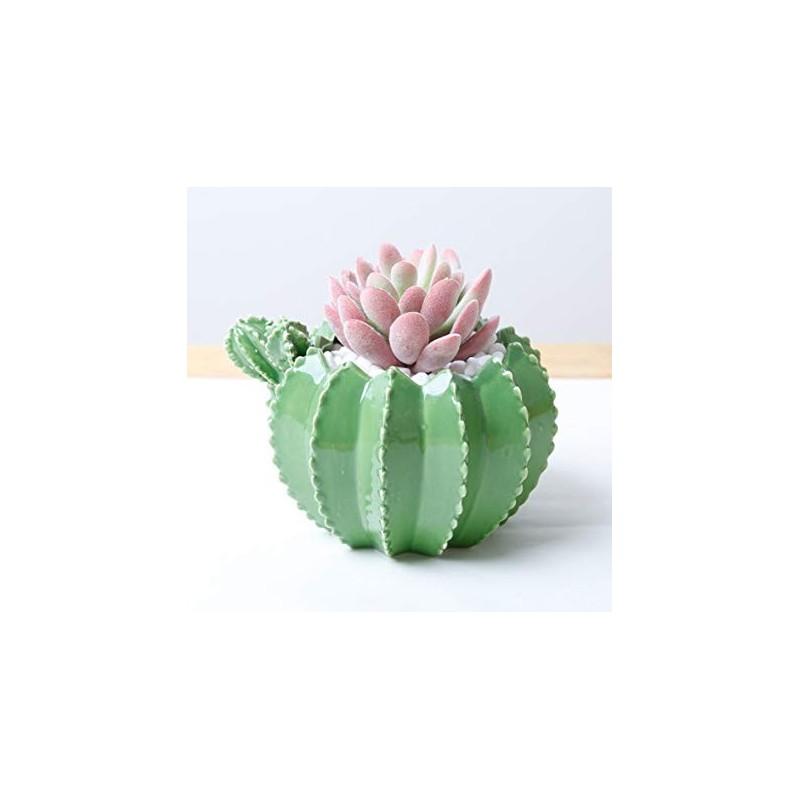 Vasinho para Plantas Suculentas ou Cactus Formato de Cactus