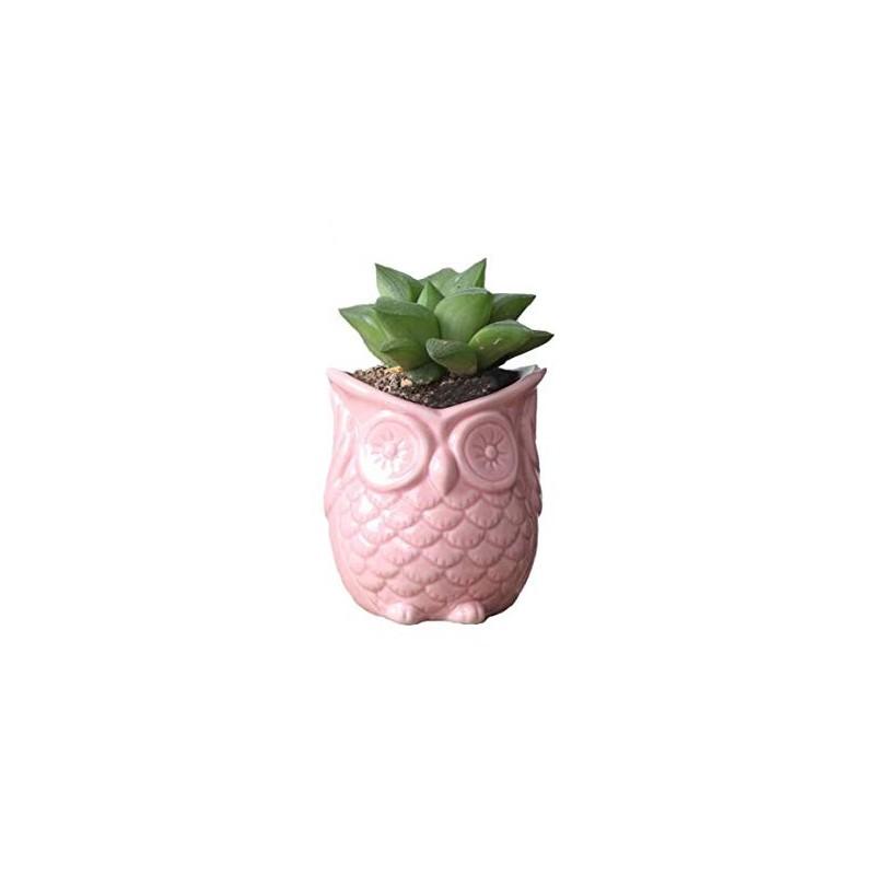 Vasinho Coruja Rosa para Plantas Suculentas ou Cactus
