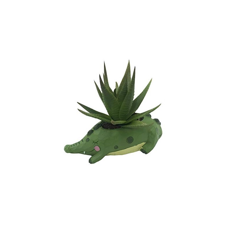Vasinho Jacaré para Plantas Suculentas ou Cactus