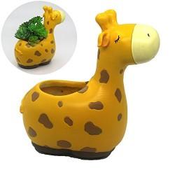 Vasinho Girafa para Plantas Suculentas ou Cactus