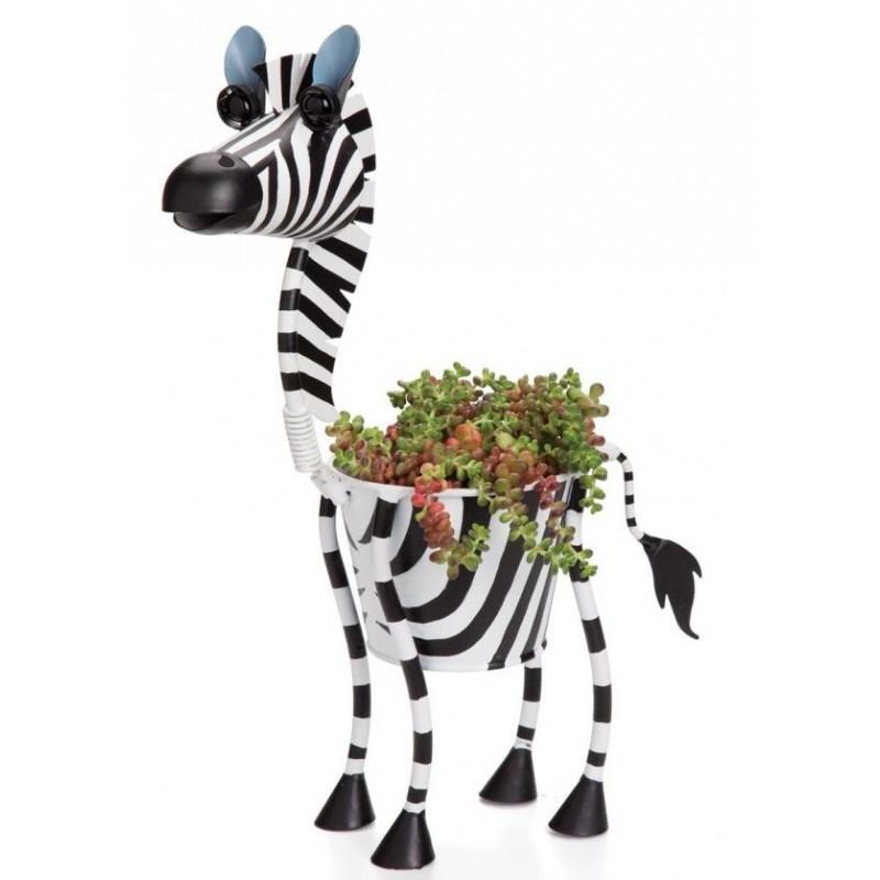 Vasinho Zebra para Plantas Suculentas ou Cactus