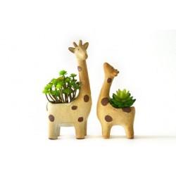 Kit Vasos para Plantas Suculentas ou Cactus Metálico Girafas