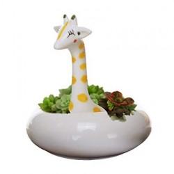 Vaso Cerâmica para Plantas Suculentas ou Cactus Metálico Girafa