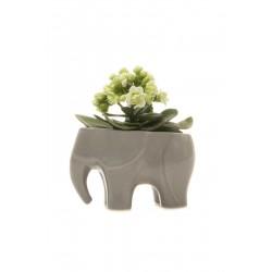 Vaso Cerâmica Formato de Elefante para Plantas Suculentas ou Cactus