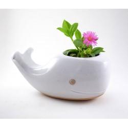Vaso Cerâmica para Plantas Suculentas ou Cactus Baleia