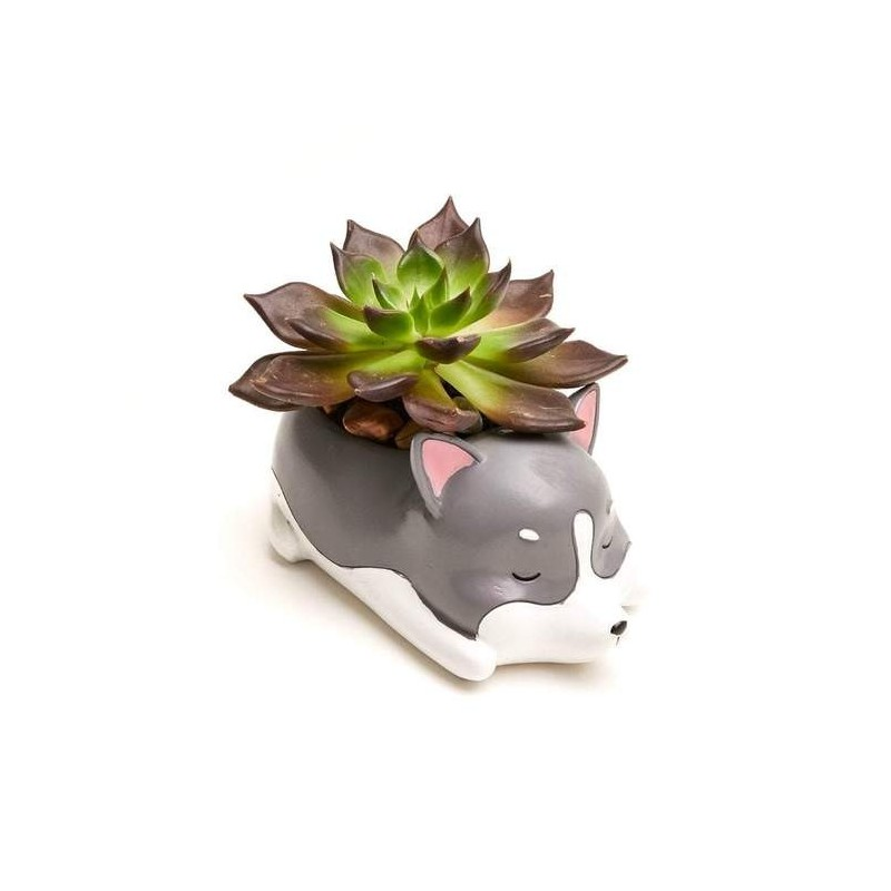 Mini Vaso Cerâmica Gatinho Plantas Suculentas Cactus