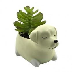 Vaso Porcelana Formato de Cachorro Branco  para Plantas Suculentas Cactus