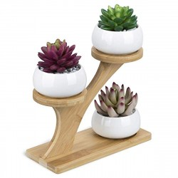 Suporte Bamboo para 3 Mini Vasinho de Plantas Suculentas Cactus