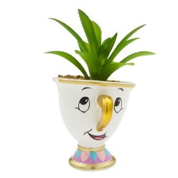 Mini Vaso de Plantas Suculentas Cactus Formato Xícara Disney