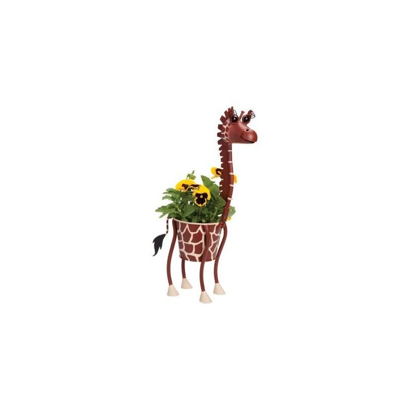 Vasinho Metal Girafa para Plantas Suculentas ou Cactus