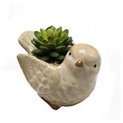 Vasinho Cerâmica Passarinho para Plantas Suculentas ou Cactus
