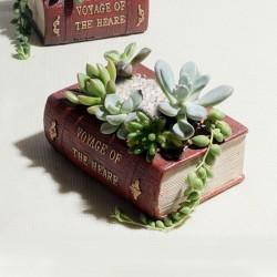 Vaso para Suculenta Formato de Pilha de Livros para Plantas Cactus e Flores