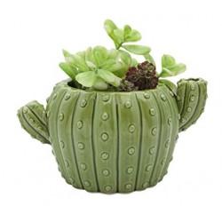 Vaso para Suculenta e Cactus Formato de Cactus Verde Cerâmica