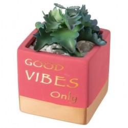 Vasinho Cerâmica para Suculentas e Cactus Plantas Flores Rosa Good Vibes Only