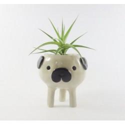 Vaso para Suculentas, Flores e Cactus Cachorro Pug Bichinhos