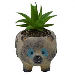 Vaso Formato de um Simpático Urso para Suculentas e Cactus