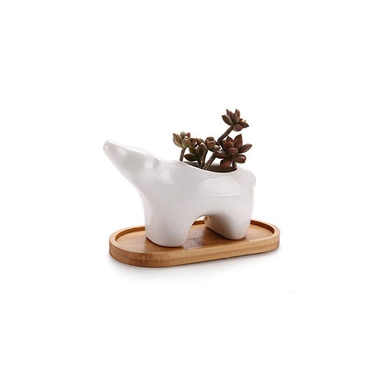 Vaso Formato de Urso Polar com Base em Madeira para Suculentas e Cactus