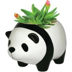 Vaso Formato de Urso Panda em Cerâmica para Suculentas e Cactus