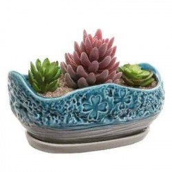 Vaso cerâmica plantas...