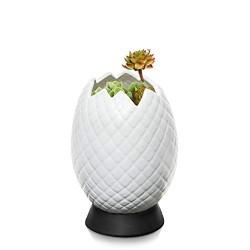 Vaso ovo de dragão branco...