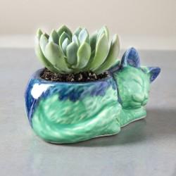 Vaso gatinho verde e azul...