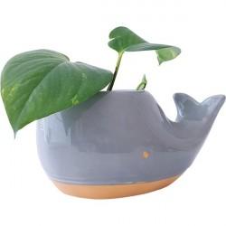 Vaso para plantas formato...